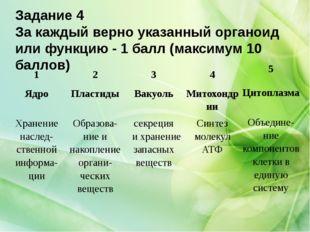 Задание 4 За каждый верно указанный органоид или функцию - 1 балл (максимум 1