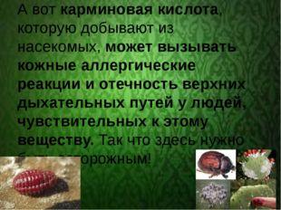 А вот карминовая кислота, которую добывают из насекомых, может вызывать кожн