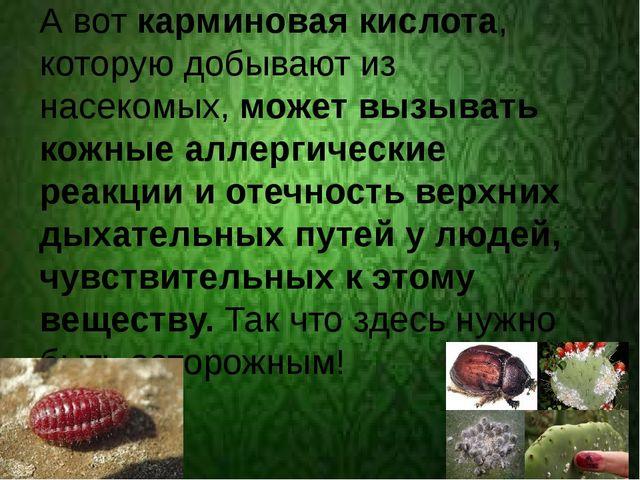 А вот карминовая кислота, которую добывают из насекомых, может вызывать кожн...