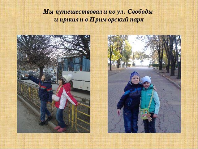 Мы путешествовали по ул. Свободы и пришли в Приморский парк