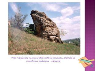 Гора Лягушинка получила свое название от скалы, похожей на земноводное животн