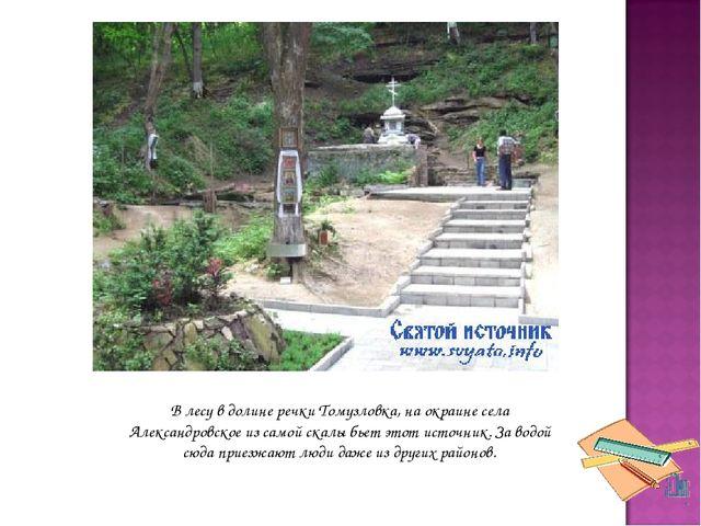 В лесу в долине речки Томузловка, на окраине села Александровское из самой ск...