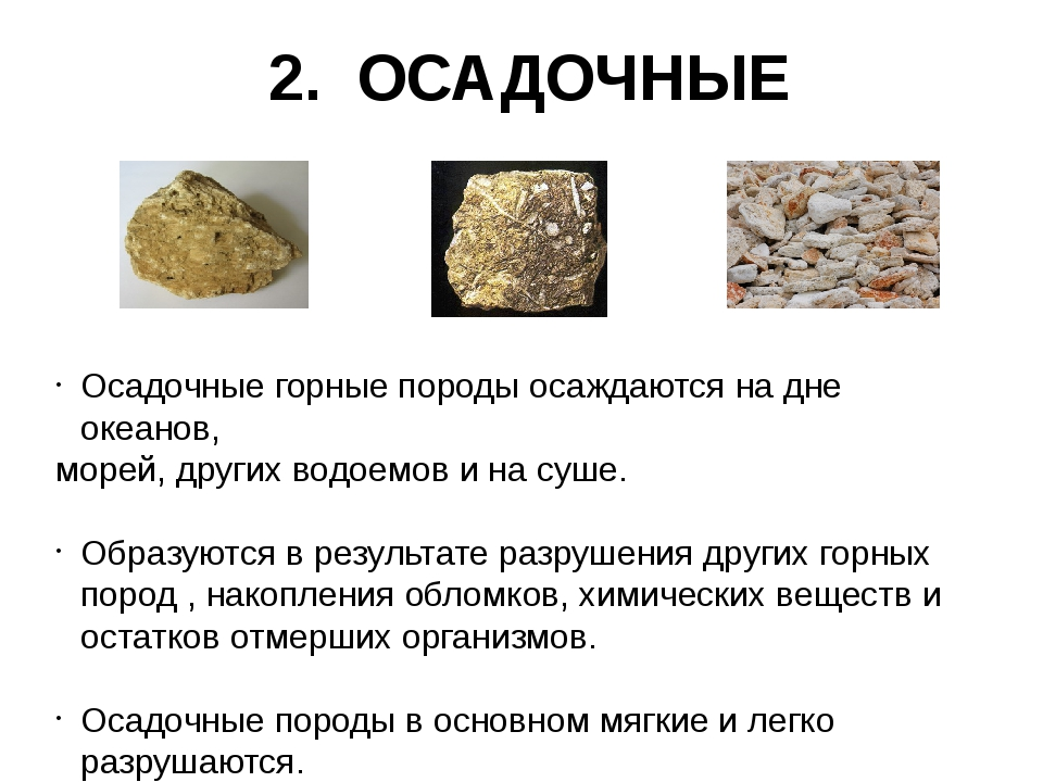 2. ОСАДОЧНЫЕ Осадочные горные породы осаждаются на дне океанов, морей, других...