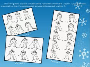 На иллюстрациях показаны одновременный одношажный коньковый ход (рис. 1), поп