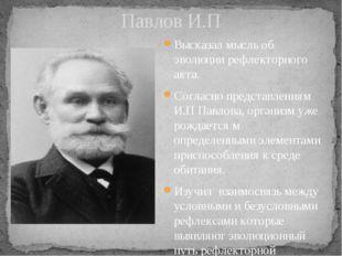 Павлов И.П Высказал мысль об эволюции рефлекторного акта. Согласно представле