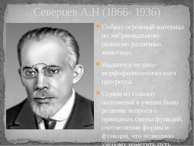 Северцев А.Н (1866- 1936) Собрал огромный материал по эмбриональному развитию...