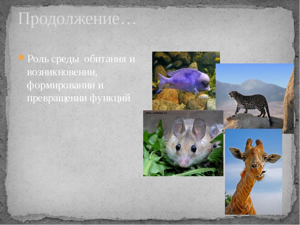 Продолжение… Роль среды обитания и возникновении, формировании и превращении...
