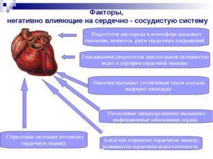 Факторы, негативно влияющие на сердечно - сосудистую систему Недостаток кисло