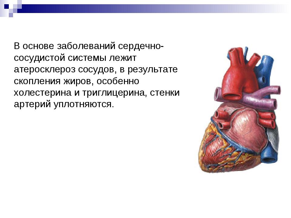 В основе заболеваний сердечно-сосудистой системы лежит атеросклероз сосудов,...