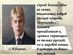 С.А.Есенин Сергей Есенин-один из самых знаменитых певцов русской природы. Тво