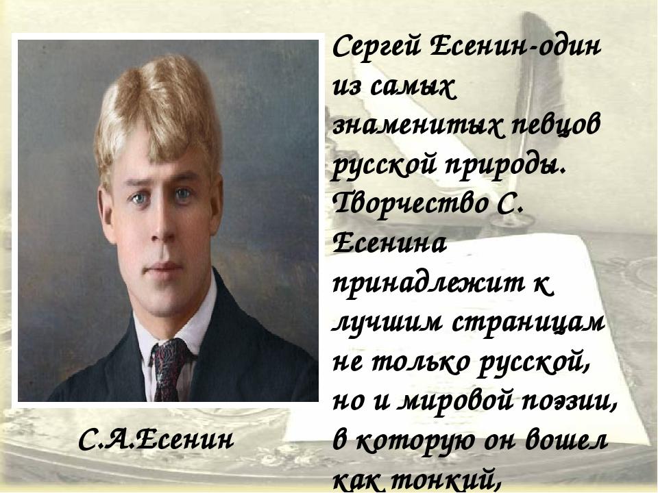 С.А.Есенин Сергей Есенин-один из самых знаменитых певцов русской природы. Тво...