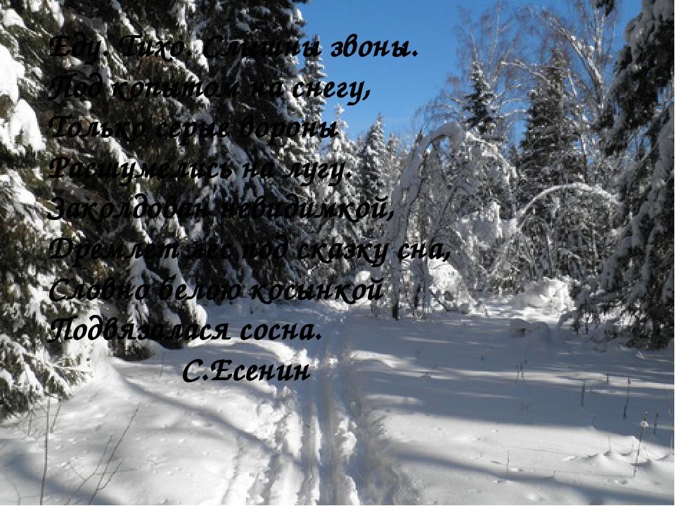 Еду. Тихо. Слышны звоны. Под копытом на снегу, Только серые вороны Расшумелис...
