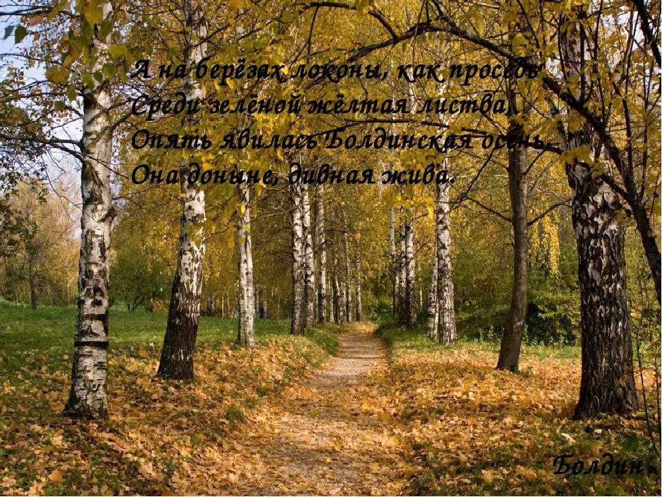А на берёзах локоны, как проседь Среди зелёной жёлтая листва, Опять явилась Б...
