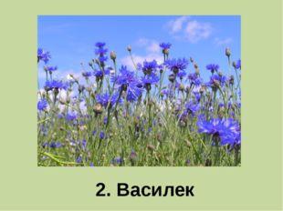 2. Василек