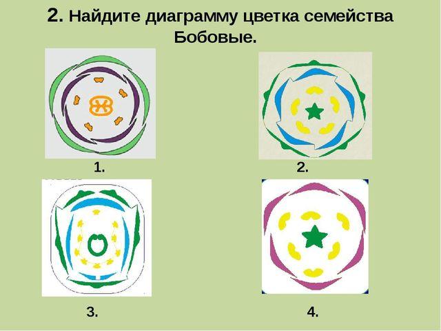 2. Найдите диаграмму цветка семейства Бобовые. 1. 3. 2. 4.