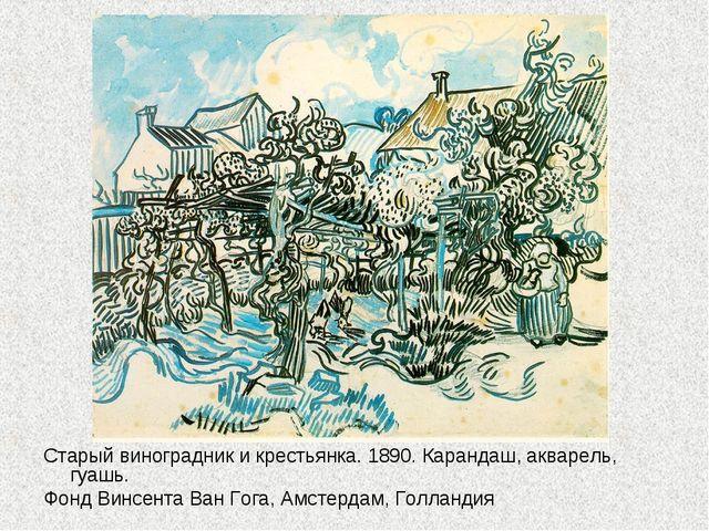 Старый виноградник и крестьянка. 1890. Карандаш, акварель, гуашь. Фонд Винсен...