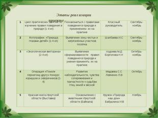 Этапы реализации проекта 1Цикл практических занятий по изучению правил повед