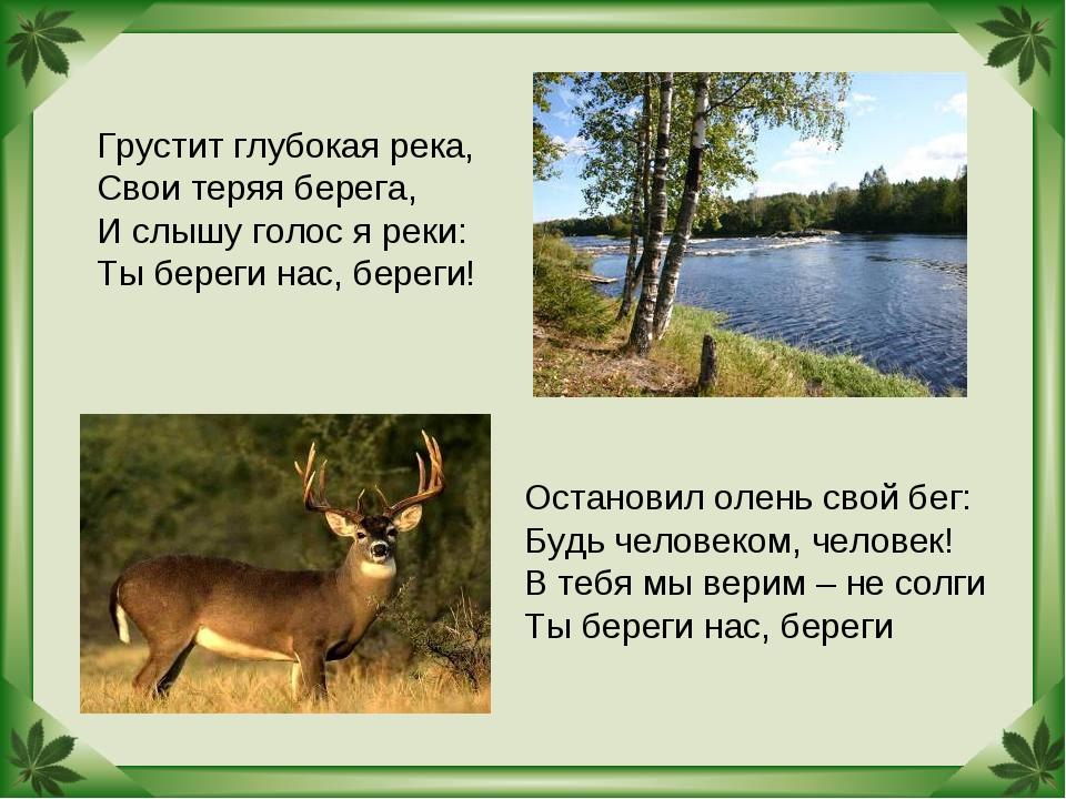 Грустит глубокая река, Свои теряя берега, И слышу голос я реки: Ты береги нас...
