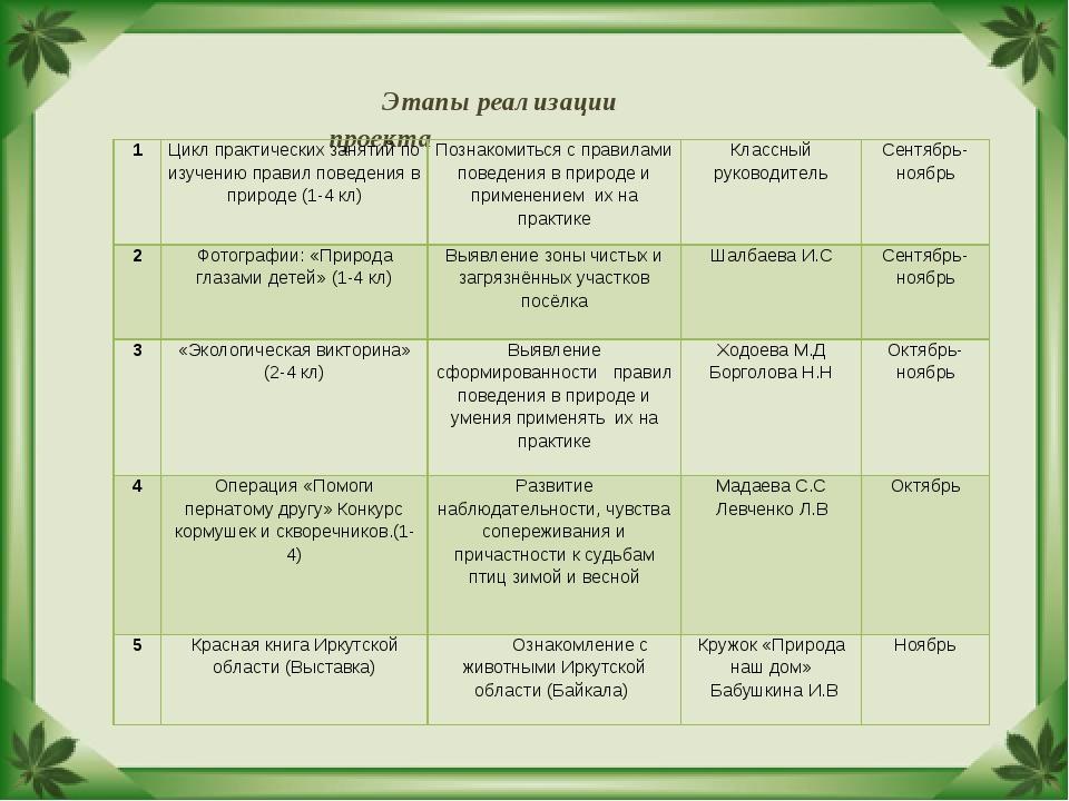 Этапы реализации проекта 1Цикл практических занятий по изучению правил повед...