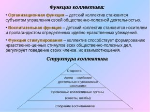 Функции коллектива: Организационная функция – детский коллектив становится су