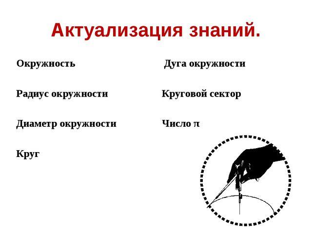 Актуализация знаний. Окружность Радиус окружности Диаметр окружности Круг Дуг...