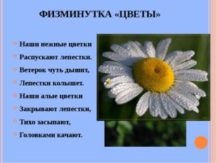 ФИЗМИНУТКА «ЦВЕТЫ» Наши нежные цветки Распускают лепестки. Ветерок чуть дышит
