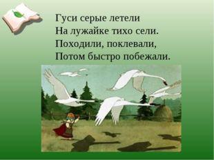 Гуси серые летели На лужайке тихо сели. Походили, поклевали, Потом быстро поб