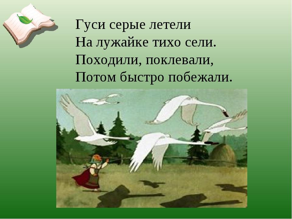 Гуси серые летели На лужайке тихо сели. Походили, поклевали, Потом быстро поб...