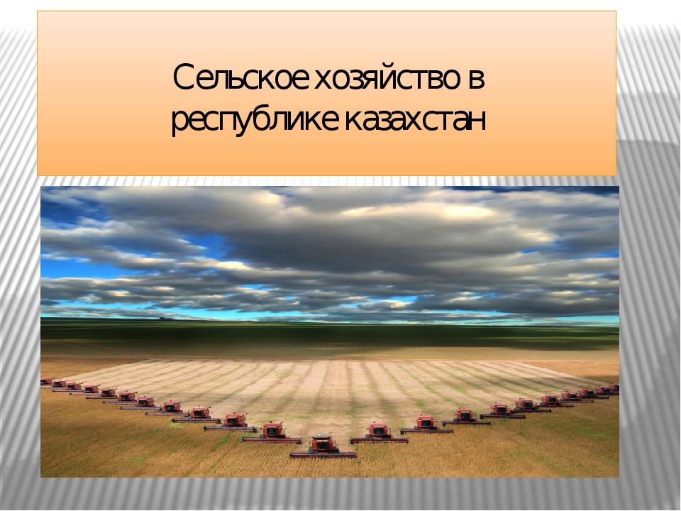 Сельское хозяйство в республике казахстан Сельско хозяйство в Республики Каз...