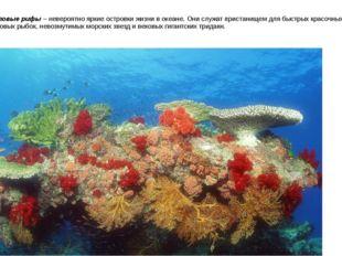 Коралловые рифы – невероятно яркие островки жизни в океане. Они служат приста