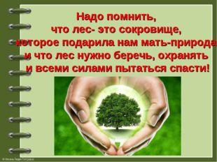 Надо помнить, что лес- это сокровище, которое подарила нам мать-природа и что