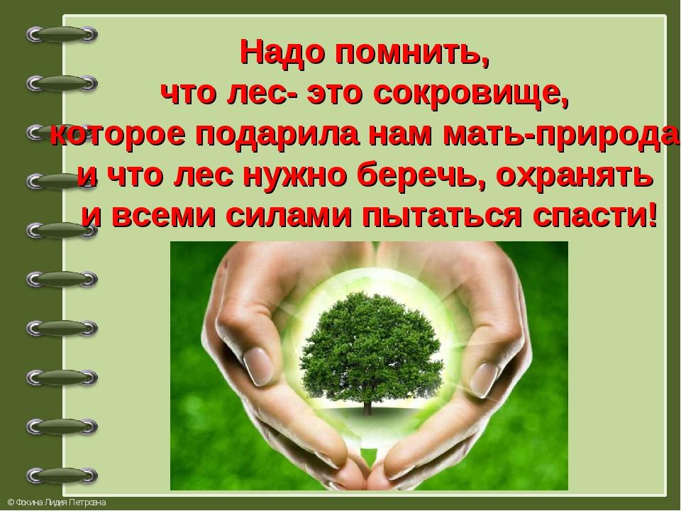 Надо помнить, что лес- это сокровище, которое подарила нам мать-природа и что...