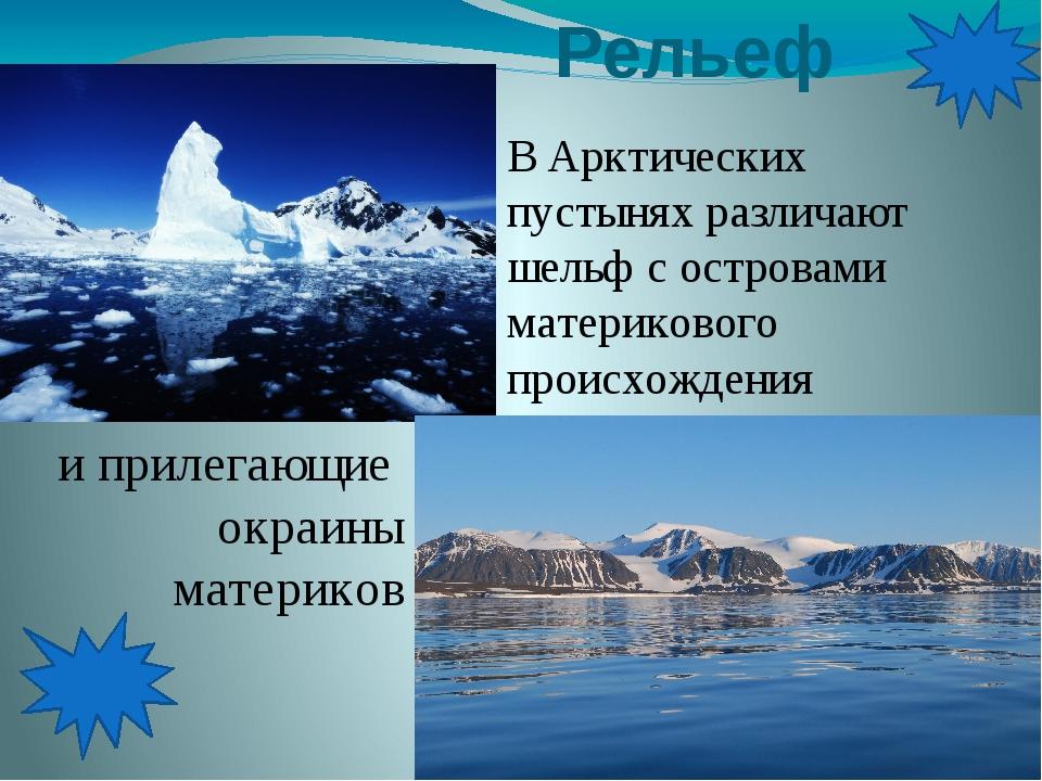 Рельеф В Арктических пустынях различают шельф с островами материкового проис...