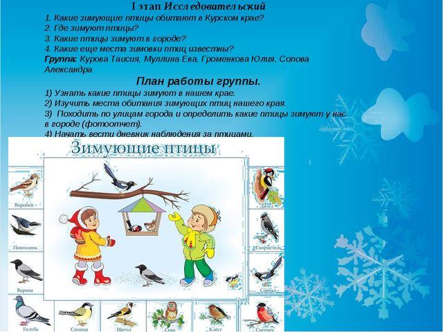 I этап Исследовательский 1.Какие зимующие птицы обитают в Курском крае? 2.Г...