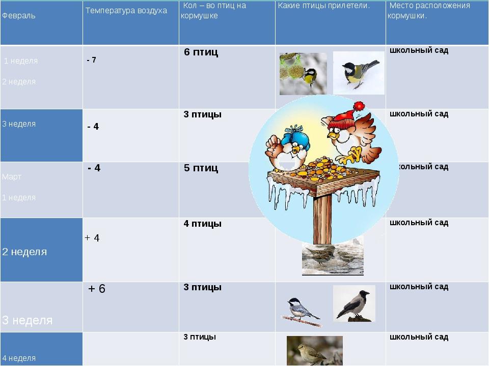 Февраль    Температура воздуха Кол – во птиц на кормушке Какие птицы...