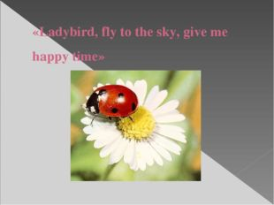 «Ladybird, fly to the sky, give me happy time»