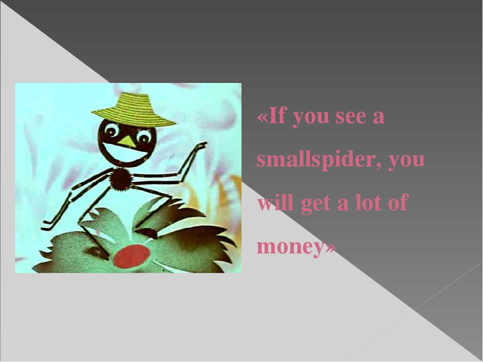 «If you see a smallspider, you will get a lot of money»