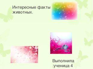 Интересные факты о животных. Выполнила :ученица 4 «Е»класса Данилова София. Р