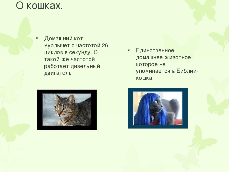 О кошках. Домашний кот мурлычет с частотой 26 циклов в секунду. С такой же ча...