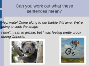 Can you work out what these sentences mean? Hey, mate! Come along to our barb