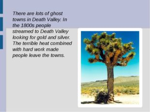 There are lots of ghost towns in Death Valley. In the 1800s people streamed t