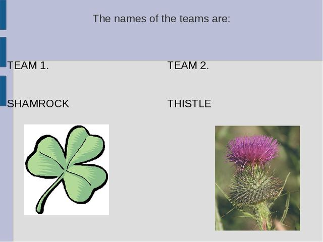 The names of the teams are: TEAM 1. SHAMROCK TEAM 2. THISTLE