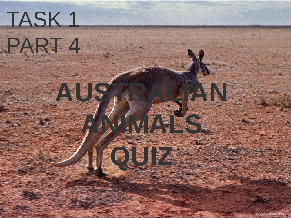 TASK 1 PART 4 AUSTRALIAN ANIMALS QUIZ