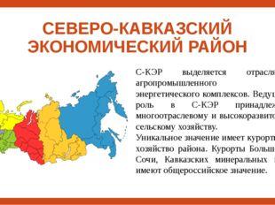 СЕВЕРО-КАВКАЗСКИЙ ЭКОНОМИЧЕСКИЙ РАЙОН С-КЭР выделяется отраслями агропромышле