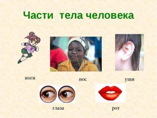 Части тела человека ноги нос уши глаза рот