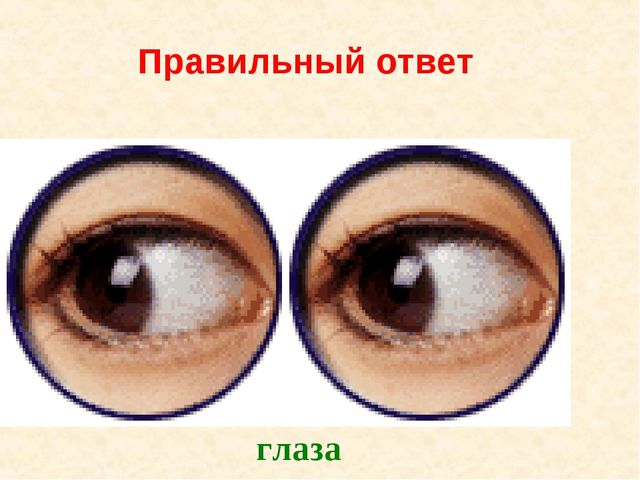 Правильный ответ глаза