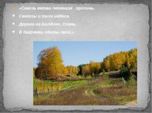 «Сквозь ветви летящая просинь. Светлы и тихи небеса. Дорога на Болдино. Осен
