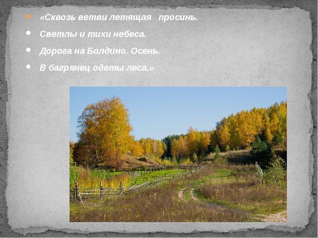 «Сквозь ветви летящая просинь. Светлы и тихи небеса. Дорога на Болдино. Осен...