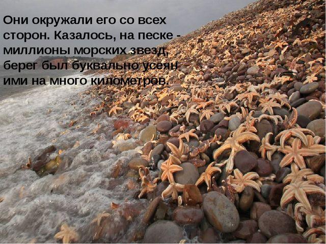Они окружали его со всех сторон. Казалось, на песке - миллионы морских звезд,...