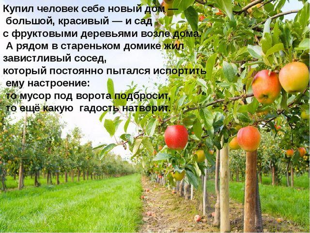 Купил человек себе новый дом — большой, красивый — и сад с фруктовыми деревья...
